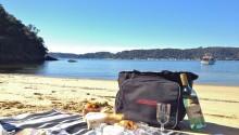 Seaplane picnic lunch Sydney